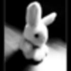 •Bunnykeep5•