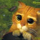 batuots katins
