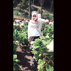 aisadwi