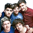 One Direction Boys Fans