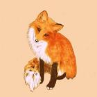 Dasha Fox