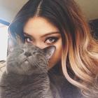 ≧°◡°≦ meow