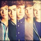 Official One Direction