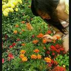 Dora Wong