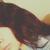 Jheiserly♥