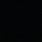 Rana abushamea