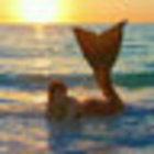 Raina Mermaid