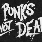 The Boulevard of Punk Rock