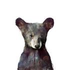 Great Bear Child