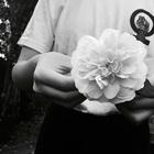 tashline bianca king