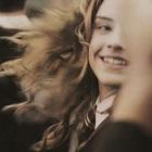 Potter.Head