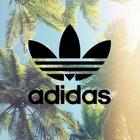 tina_adidas