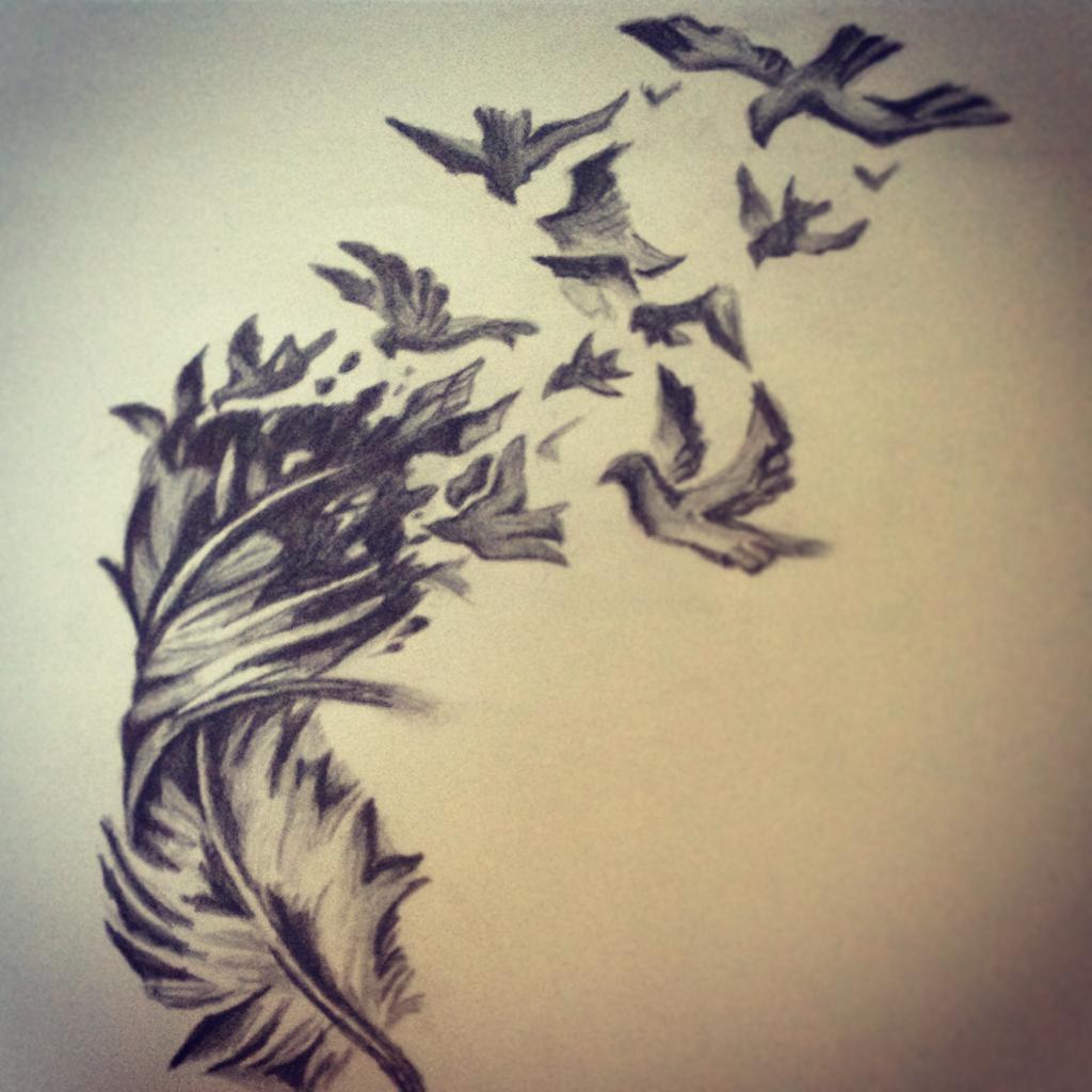 bird flying drawings in pencil wwwpixsharkcom images