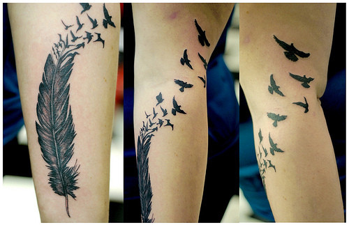 bird, birds, birds tattoo, feather, feather tattoo, featherbirds - inspiring picture on Favim.com