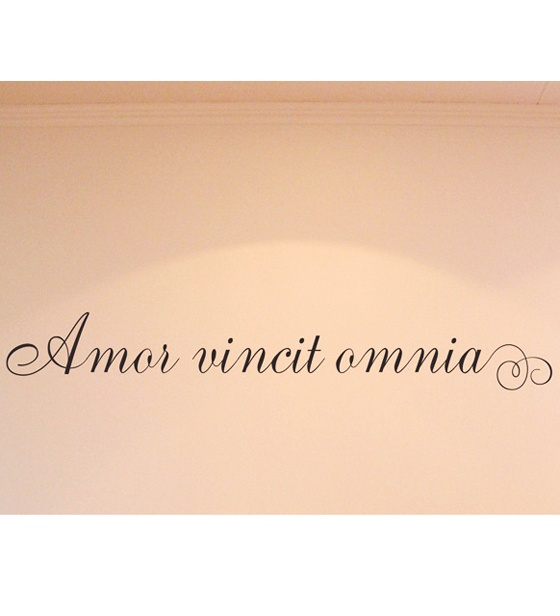 Love conquers all latin quote, forever sayings tumblr, long ...
