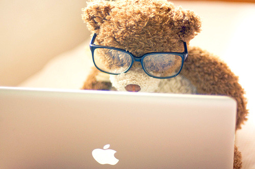 Bear-glasses-laptop-lifestyle-mac-favim.com-40814_large