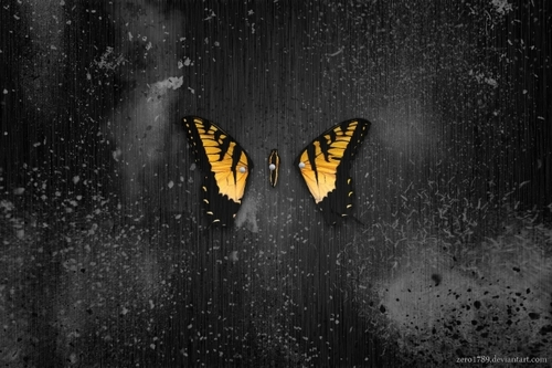 gallery for brand new eyes wallpaper