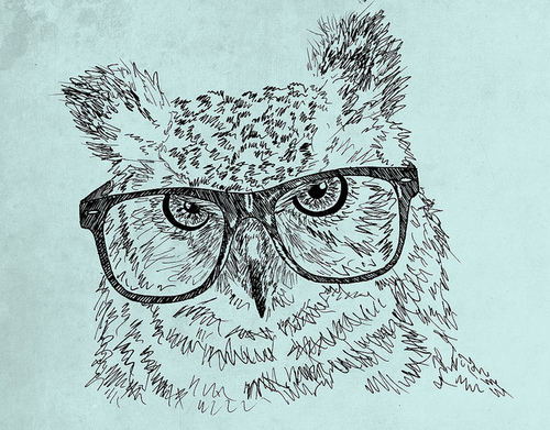 Art-bird-drawing-glasses-hipster-owl-favim.com-63324_large