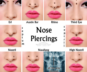 nose piercings