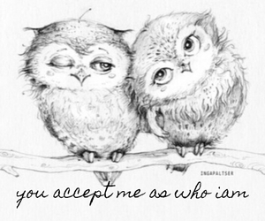 love couple accept owl