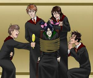 Moony, Wormtail, Padfoot, and Prongs by abigail_gracie on WHI