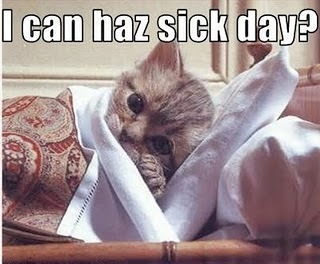Sick-day-lolcats_large