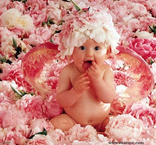 Cute-baby-in-flowers1-544x505_large