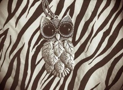 Animal-print-black-and-white-cute-love-owl-owl-necklace-favim.com-81490_large