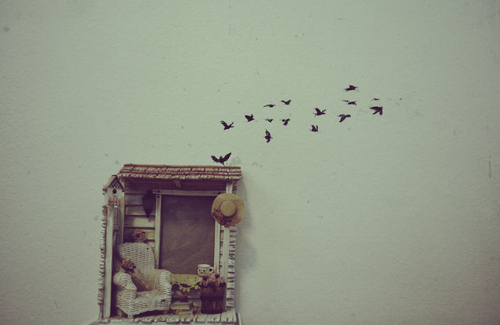 Art-birds-inspiration-photography-pretty-simple-favim.com-82738_large