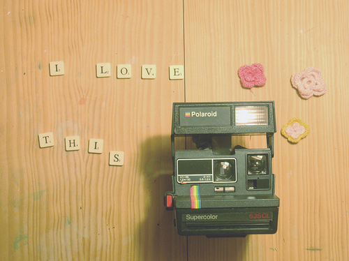 Flowers-indie-love-photography-pink-polaroid-favim.com-88557_large