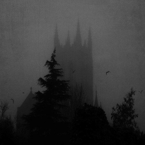 Castle-creepy-dark-forest-gothic-favim.com-56548_large