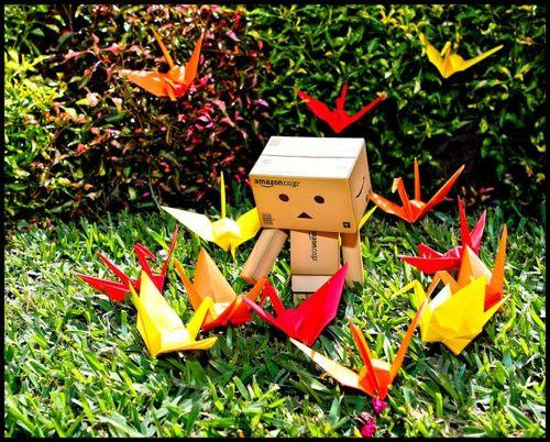 Feeding-fire-bird-box-amazon-crane-origami-fun-yard-lawn_large