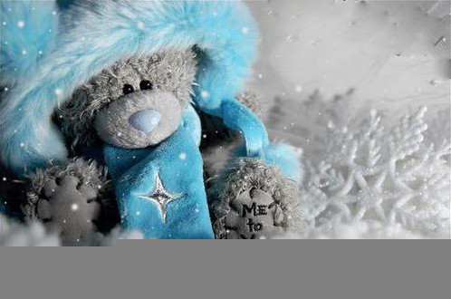 Bear-cold-cute-snow-tatty-teddy-teddy-bear-favim.com-60097_large