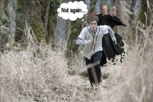 http://data.whicdn.com/images/11720911/Edward-Voldemort-funny-twilight-series-10200045-652-434_large.jpg
