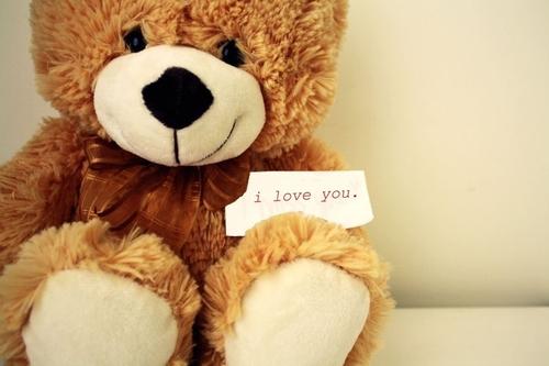 Bear-cute-i-love-you-love-teddy-bear-favim.com-92455_large
