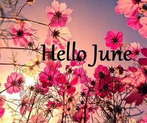 hello june...