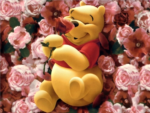 Pooh-rose-cute-teddy_large