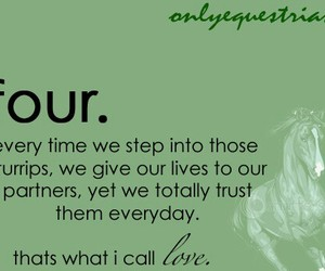 I am an Equestrian Wall Quotes Decal  WallQuotescom