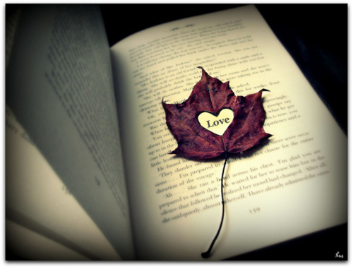 Book-cute-leaf-love-pretty-favim.com-110049_large