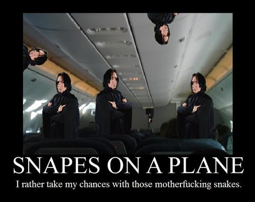 Snapes_on_a_plane_by_ijustpokedyou_large