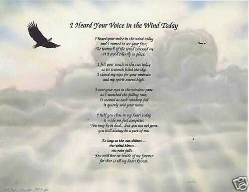a voice in the wind pdf