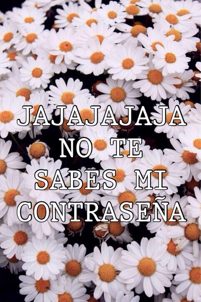 JAJAJAJA NO TE SABES MI CONTRASEÑA #2   We Heart It