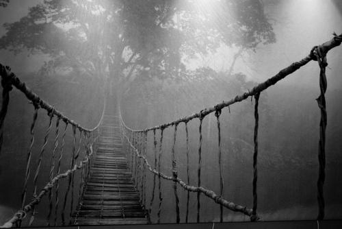 Носталгичният мост 356876303_large