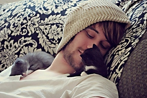 Beanie-boy-cute-kitten-micik-favim.com-116856_large