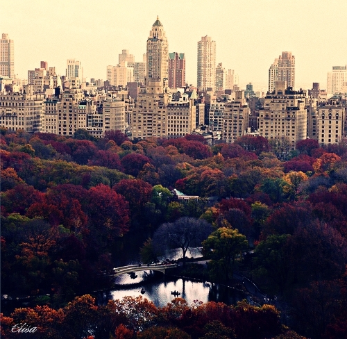Autumn in New York by ~LilyArticMonkey on deviantART