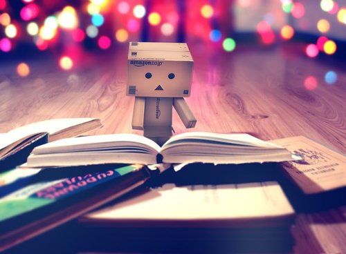 Danbo_book__by_themironist-d428i7n_large