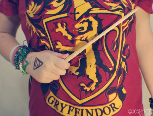 Fat-gryffindor-harry-potter-hot-sexy-favim.com-91729_large