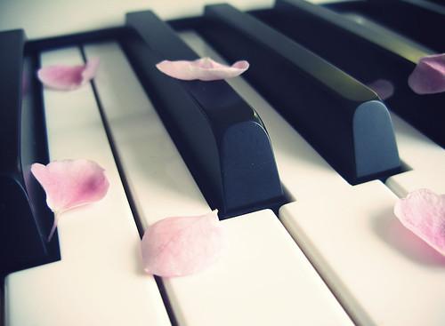 Music,petals,piano,pink-33b6f511ef25576e9a617f323518128a_h_large