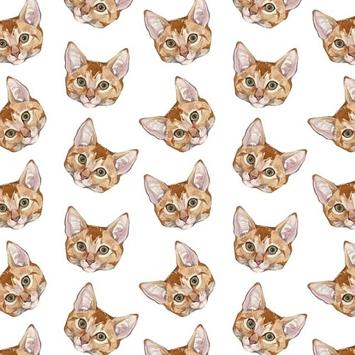 Cute Cat Patterns Tumblr