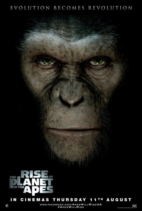 Rise-of-the-planet-of-the-apes-poster-550x817_large